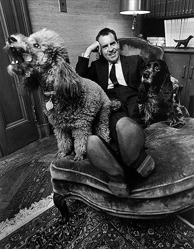 Richard Nixon relaxing with his poodle Vickie & his cocker spaniel Checkers, 1964 Archival Pigment Print