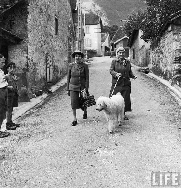 Author Gertrude Stein walking with Alice B. Toklas and their dog, Basket, after liberation in France, September, 1944<br/>