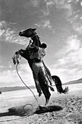 On the set of the Misfits, Nevada Gelatin Silver print